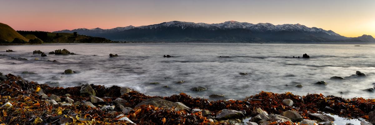 rocky coastline in kaikoura new zealand